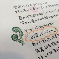 3.20こごみ.JPG